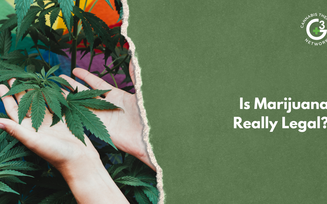 Is Marijuana Really Legal? Everything You Need To Know About Cannabis Laws