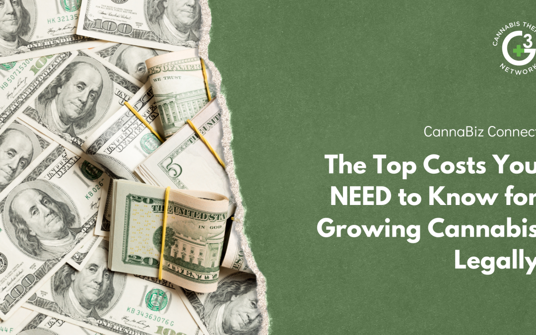 The Top Costs You NEED to Know for Growing Cannabis Legally