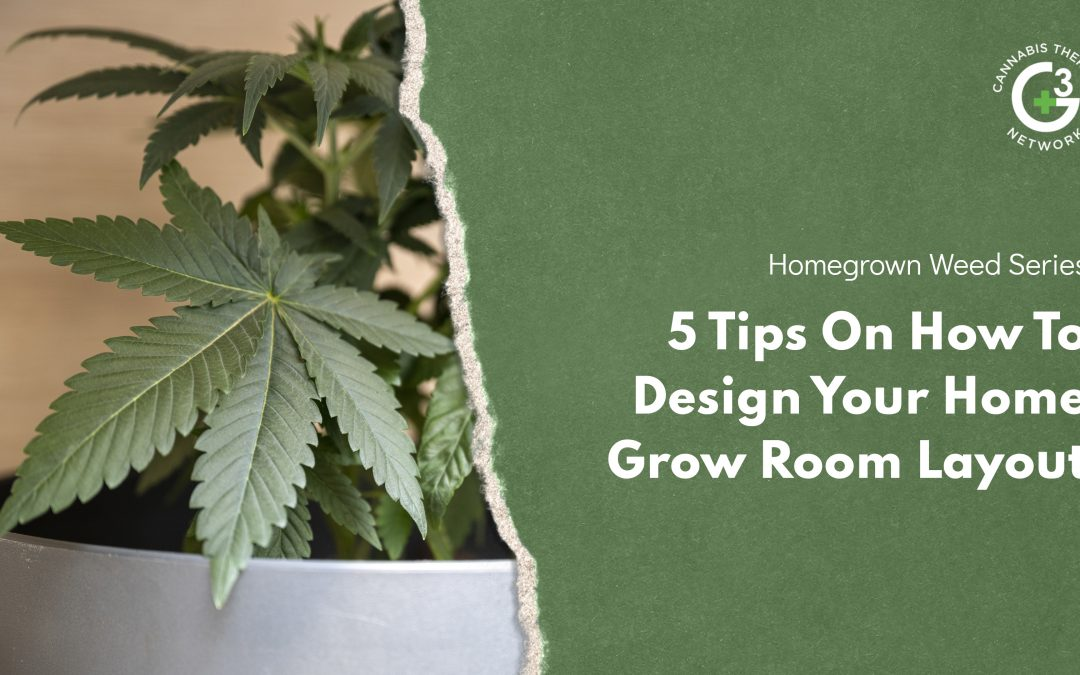 5 Tips On How To Design Your Home Grow Room Layout