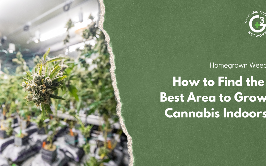 How to Find the Best Area to Grow Cannabis Indoors