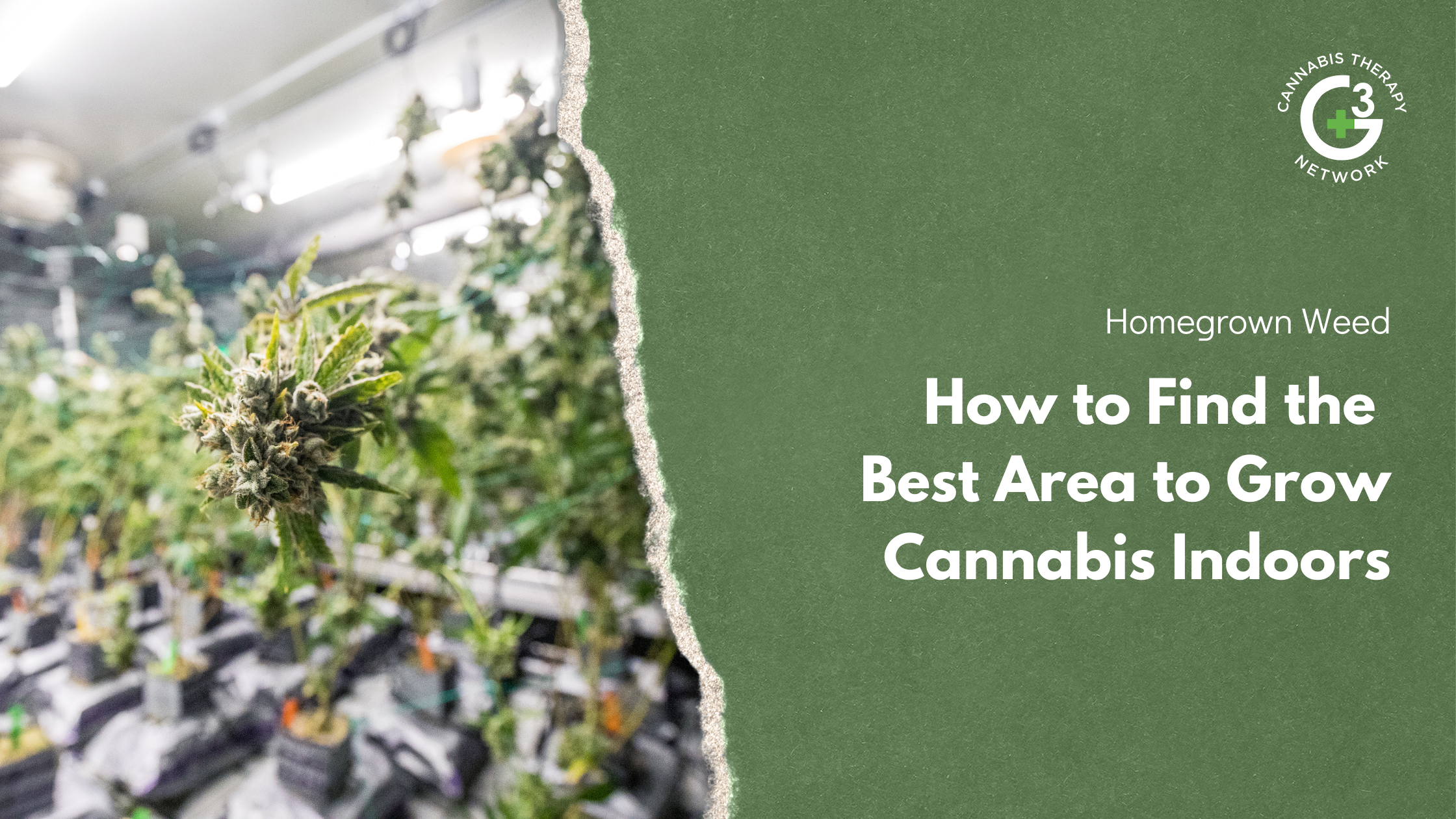 How to find the best place to grow cannabis indoors
