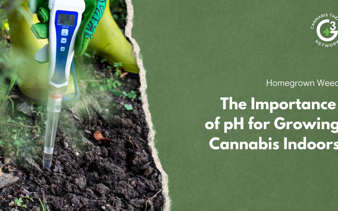 The Importance of pH for Growing Cannabis Indoors