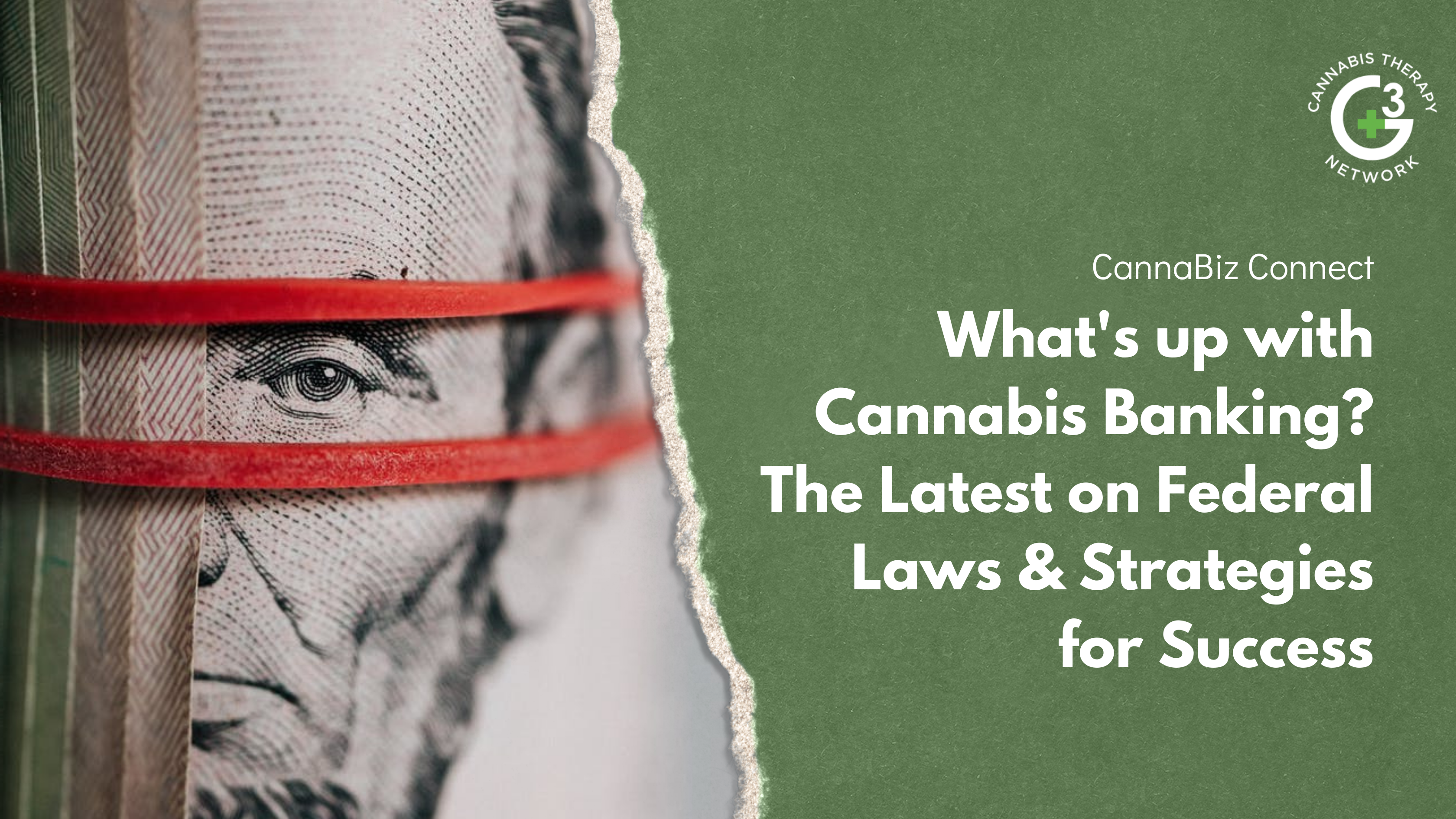 The 2021 Ultimate Guide To Cannabis Banking in the USA