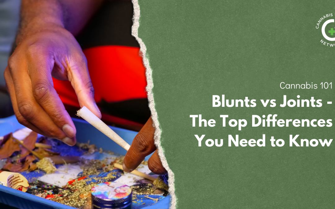 Blunts vs Joints: The Top Differences You Need to Know