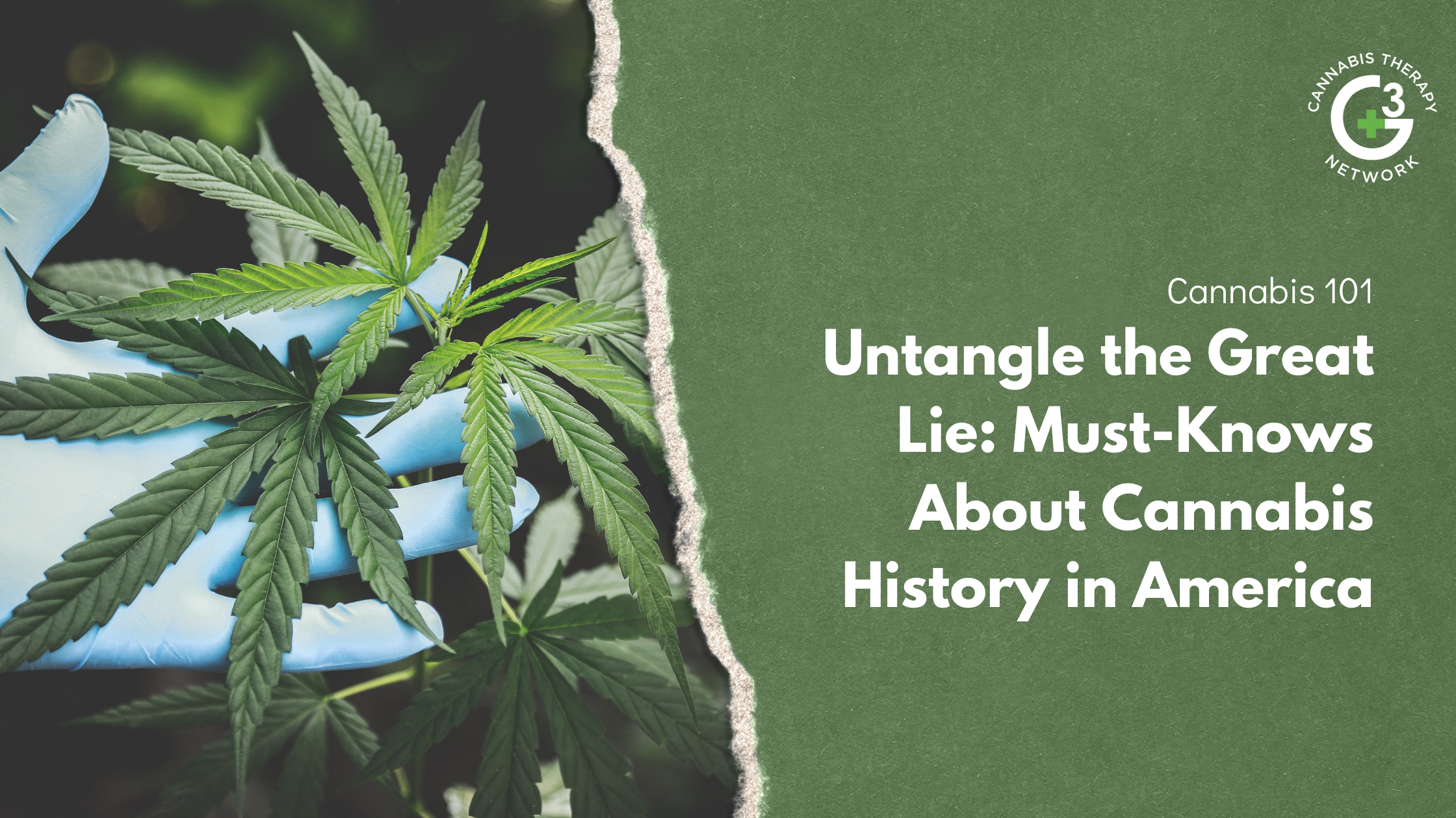 The Top Things You Need to Know About Cannabis History