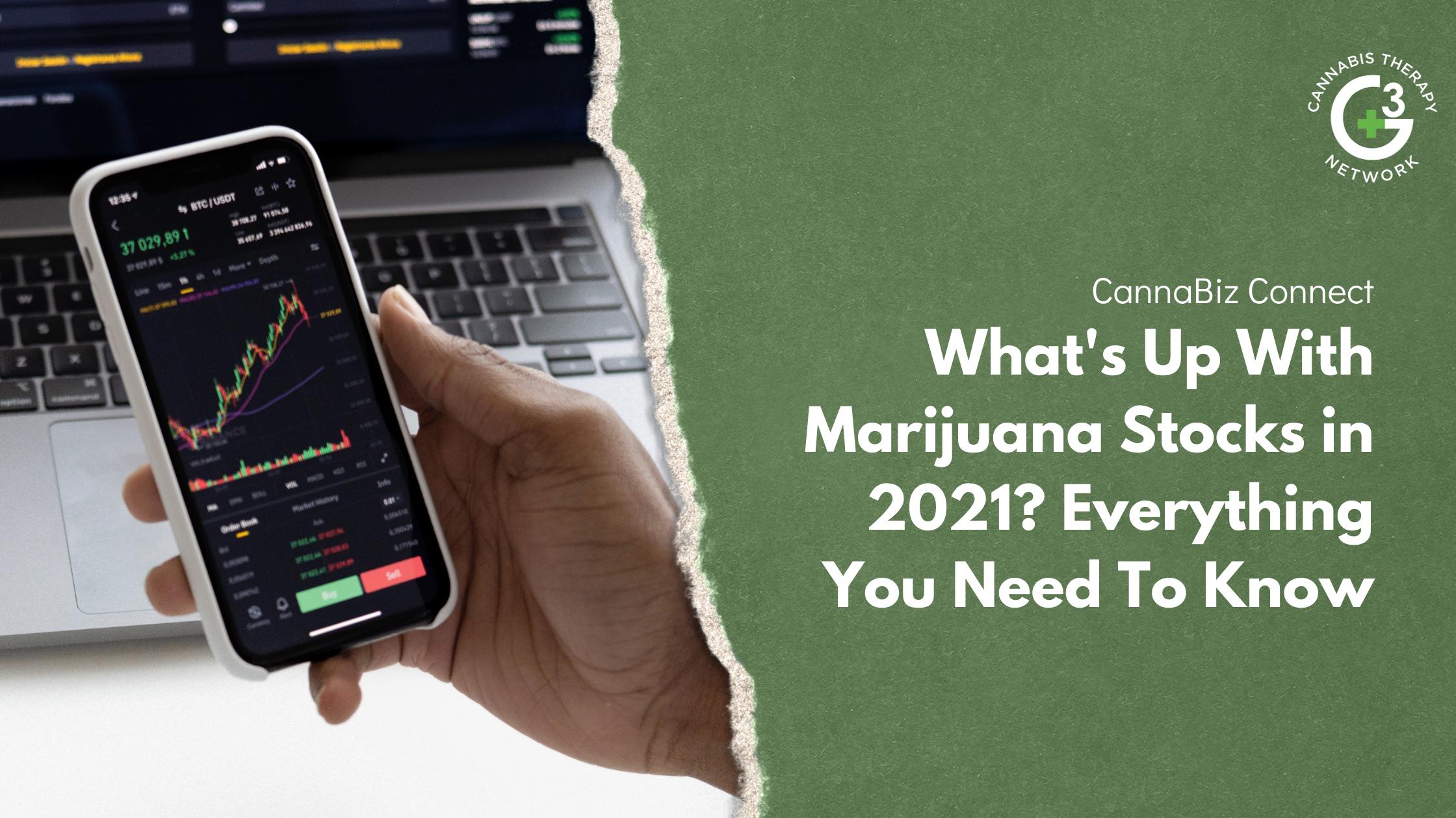 Marijuana Stocks in 2021 - Everything You Need To Know