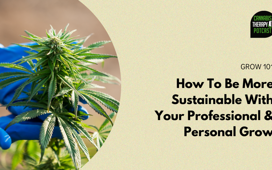 Grow Sustainable Cannabis: The Top Tips You Need To Know