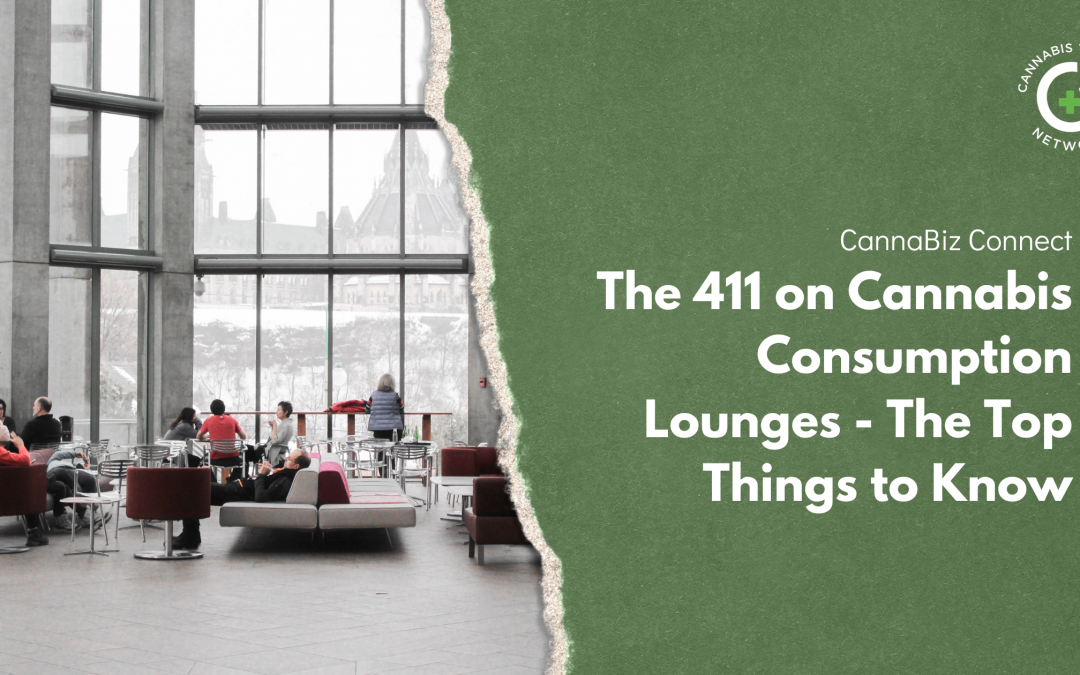 The 411 on Cannabis Consumption Lounges – The Top Things to Know